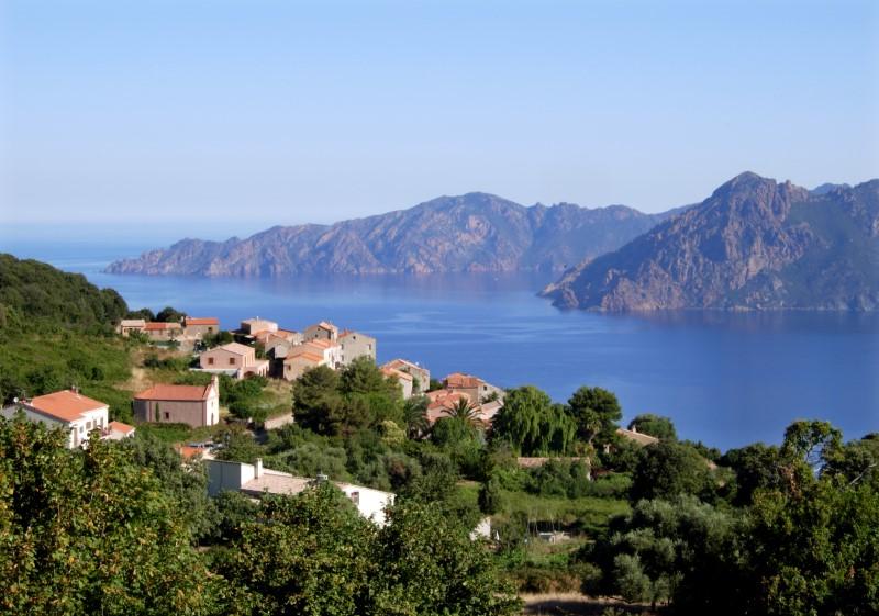 L'impôt prend le maquis — Corse